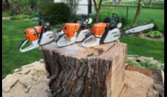 Huge stump. Cut up using the Stihl 660/460/362