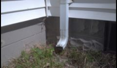 Extending downspouts away from the foundation will help prevent wet basements.