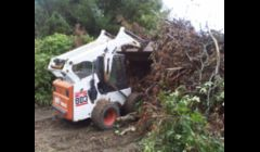Bobcat Brush mowing brush &  tree removal service of Cape Cod.