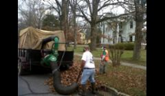 Community leaf removal\n
