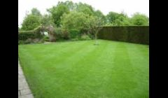 Professional commercial and residential mowing service