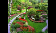Lawn Maintenance Fort Myers FL
