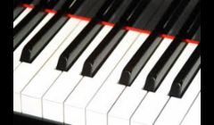 When has your piano been tuned and adjusted to sound and play beautifully?
