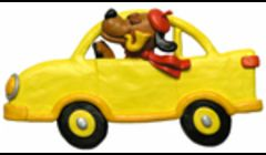 We provide pet taxi transport 24x7