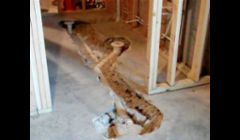 Basement plumbing rough in in Overland Park ks.