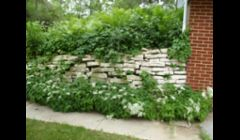 Lannon Stone wall before