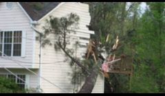 Wind and Storm Damage and Emergency Repairs for Lansing and Mid Michigan