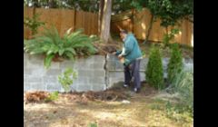 restoring a old retaining wall (BEFORE)\ \ STEP #1