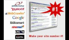We will make your site #1!
