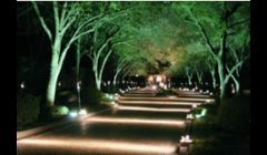Commercial Outdoor Landscape Lighting