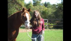 Horsemanship lessons also available